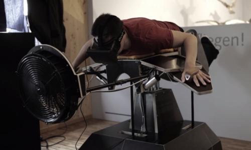 Flight Simulator:Give you feel of flying like a bird