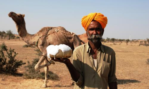Camel's Milk Never Curdle